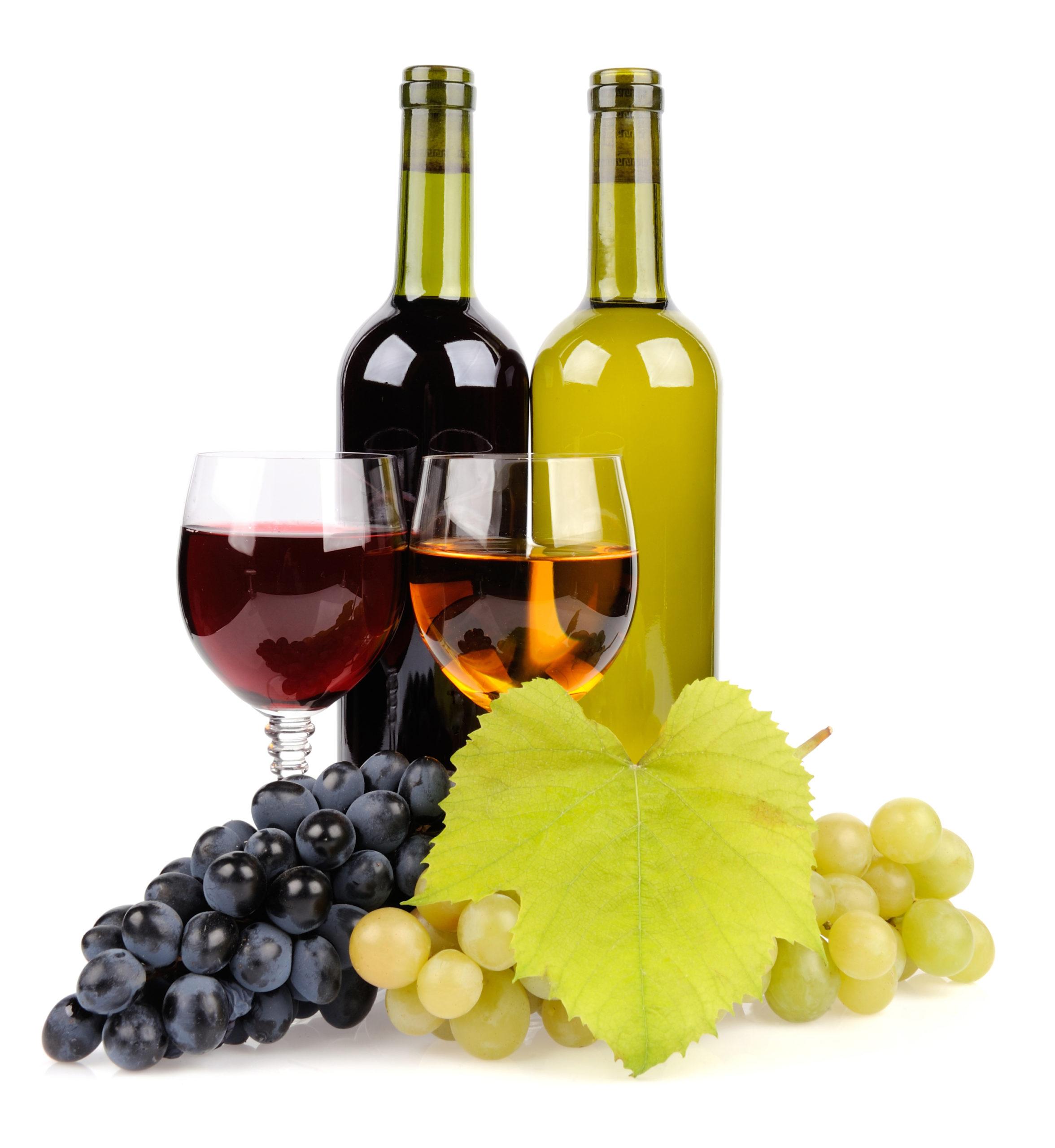 exposants salon du vin vinomedia